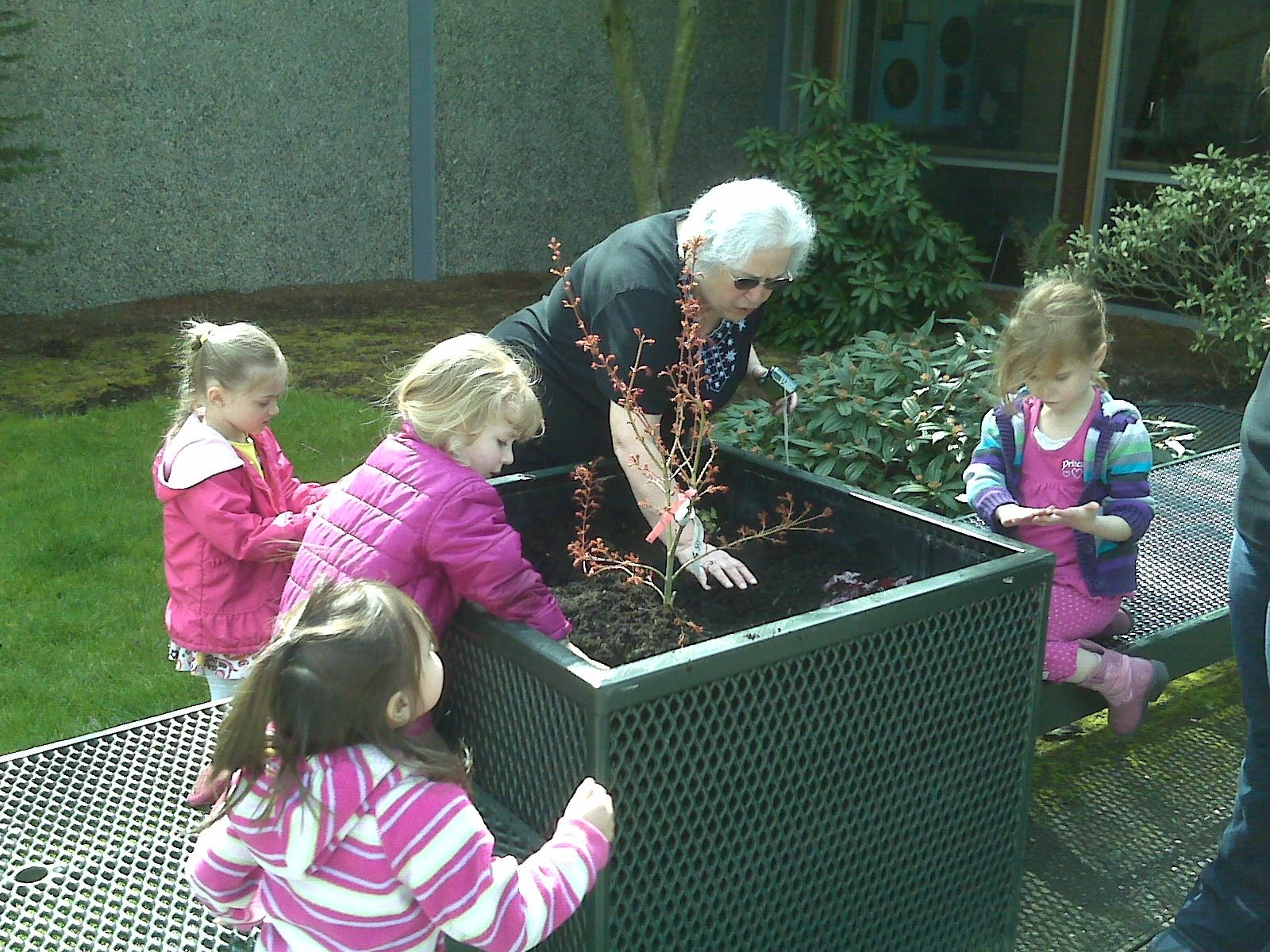 Adult teaching four girls how to plant in container on Earth Day