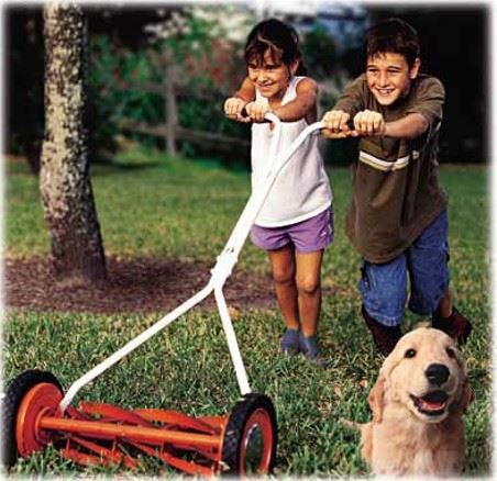kids mowing lawn with dog in background