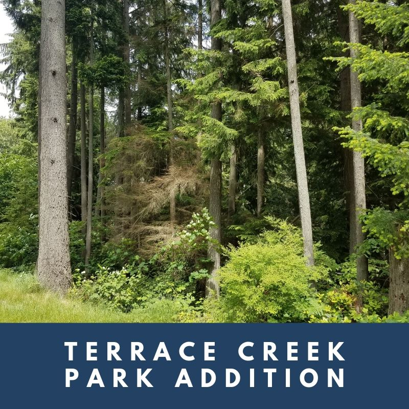 Terrace Creek Park Addition